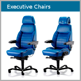 Comfy-Seating-Ergonomic-Executive-Chairs